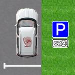 Платная парковка вМоскве