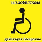 Индивидуальный знак Инвалид